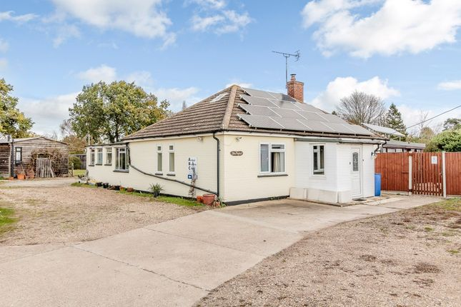 Thumbnail Bungalow for sale in Green Lane, Ardleigh, Essex