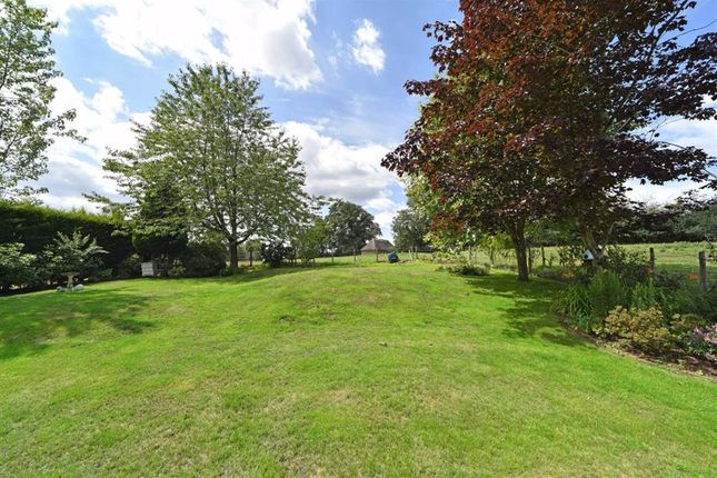Thumbnail Detached house for sale in Welford Road, Thornby, Northampton