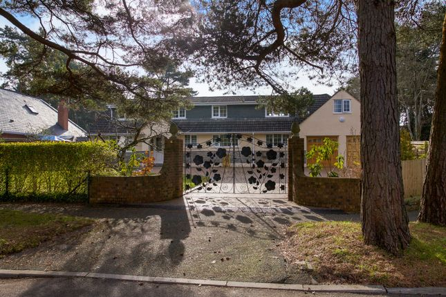 Thumbnail Detached bungalow for sale in Ashley Drive West, Ashley Heath, Ringwood