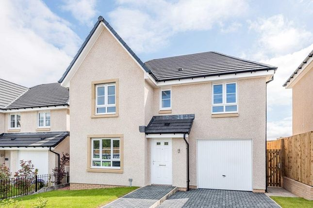 """Thumbnail Detached house for sale in """"Dunbar"""" at South Larch Road, Dunfermline"""