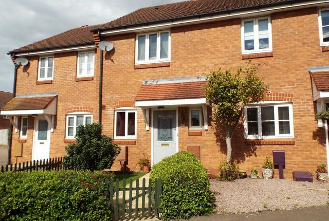 Thumbnail Terraced house for sale in Merryweather Road, Swaffham