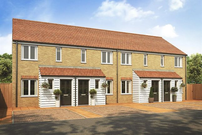 """Thumbnail Detached house for sale in """"The Alnwick"""" at Plover Road, Stanway, Colchester"""