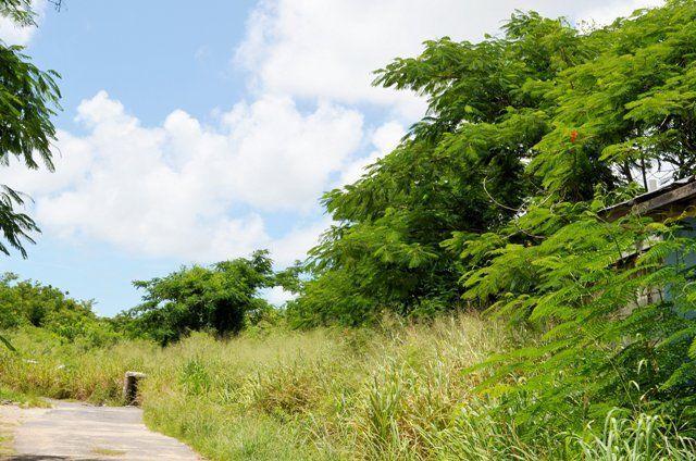 Land for sale in Bernard Road, Nassau/New Providence, The Bahamas