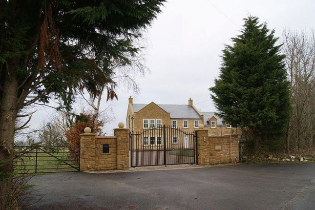 Thumbnail Detached house for sale in Milbourne, Newcastle Upon Tyne