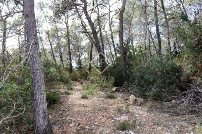 Thumbnail Land for sale in Spain, Ibiza, Santa Eulalia, Ibz16980