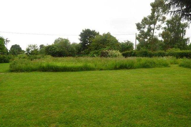 Garden of Eastleach, Cirencester GL7