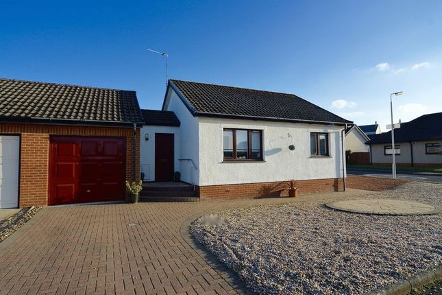 Thumbnail Detached bungalow for sale in Abbots Way, Doonfoot, Ayr