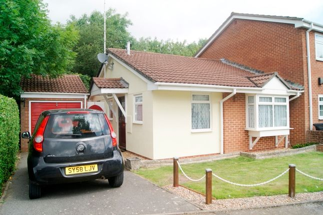 Thumbnail Bungalow to rent in Garsdale Close, Bear Cross, Bournemouth