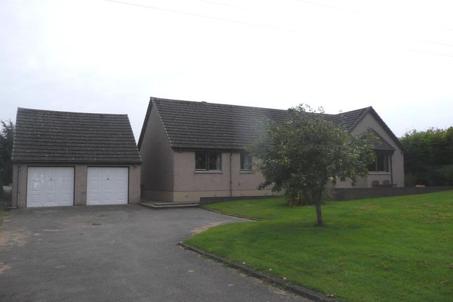 Thumbnail Bungalow to rent in Lochside, St. Cyrus, Montrose