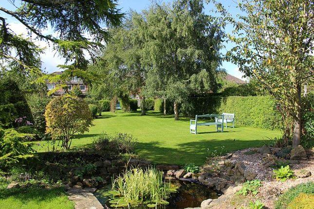 Thumbnail Detached house for sale in Aspin Lane, Knaresborough