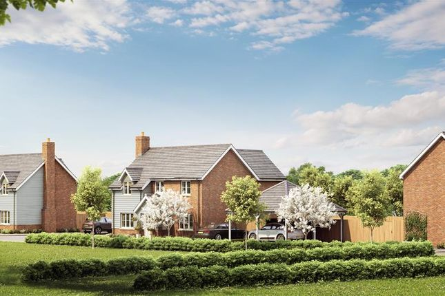 Thumbnail Detached house for sale in Downs View, Totternhoe, Dunstable
