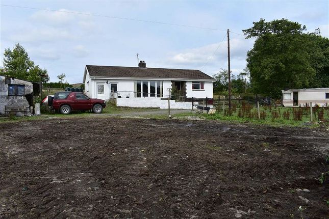 Thumbnail Farm for sale in Bethania, Llanon, Ceredigion