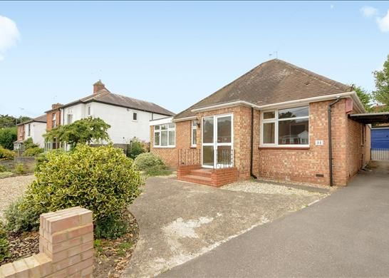 Thumbnail Bungalow to rent in Chertsey Road, Windlesham, Surrey