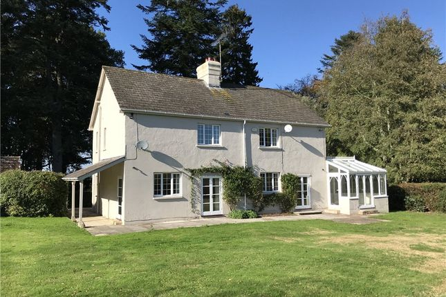 Thumbnail Detached house to rent in Berwick St John, Shaftesbury, Dorset