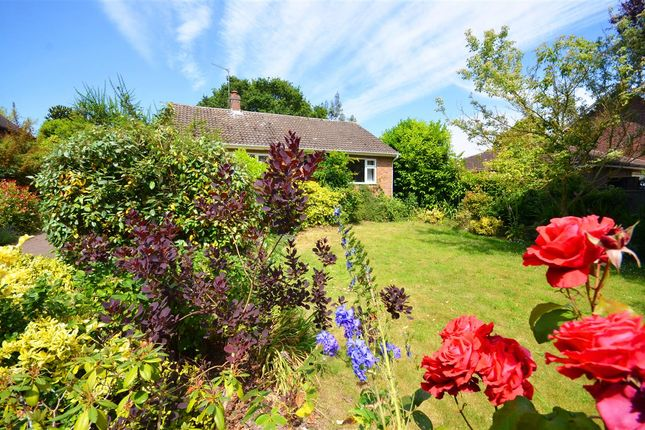Thumbnail Bungalow for sale in Norwich Road, Acle, Norwich
