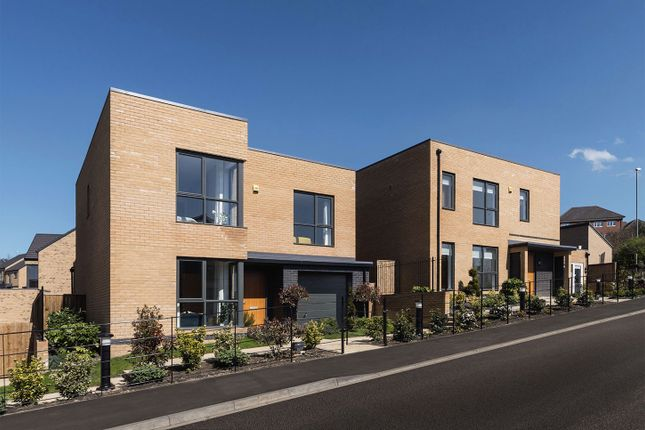 """Thumbnail Detached house for sale in """"The Beech"""" at Mount Ridge, Birtley, Chester Le Street"""
