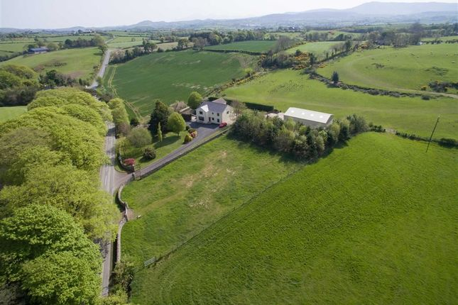 Thumbnail Detached house for sale in Grove Road, Ballynahinch, Down