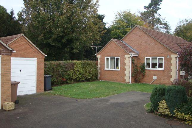 Thumbnail Detached bungalow to rent in Haverholme Close, Ruskington