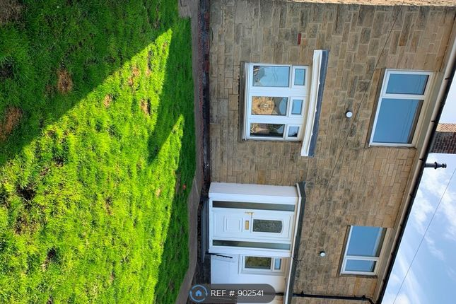 Thumbnail Semi-detached house to rent in Windsor Gardens, Alnwick