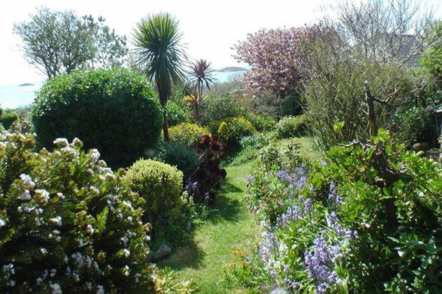 Garden of Higher Town, St. Martin's, Isles Of Scilly TR25