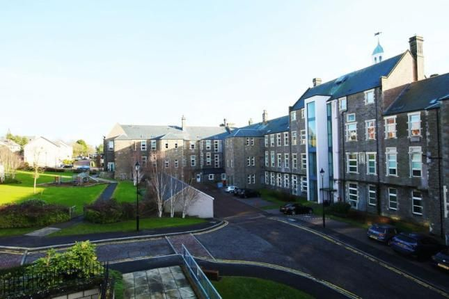 Thumbnail Flat to rent in Scrimgeour Place, Dundee