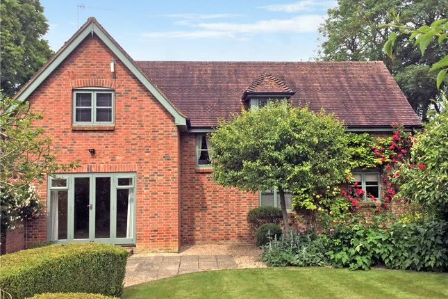 Thumbnail Detached house to rent in Manor Road, Gussage St. Michael, Wimborne, Dorset