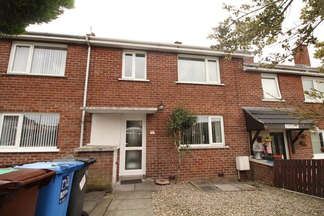 Thumbnail Property to rent in Whinpark Road, Newtownards