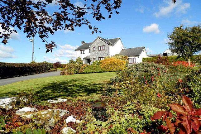 Thumbnail Detached house for sale in Rhos, Llandysul