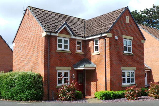 Thumbnail Detached house for sale in Highfields Park Drive, Derby