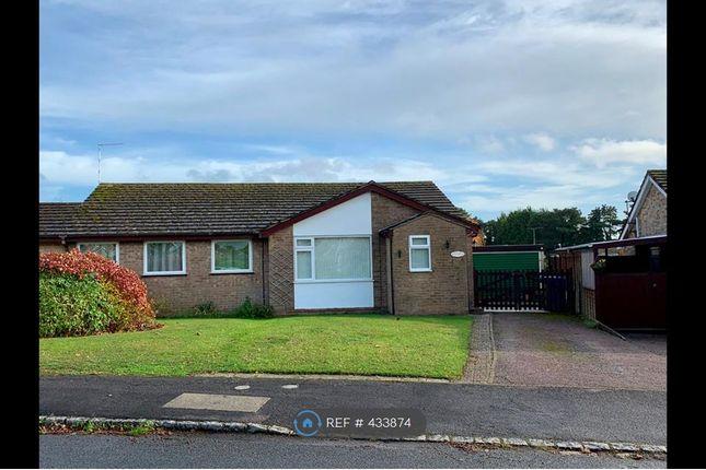Thumbnail Bungalow to rent in Ellesmere Avenue, Brackley