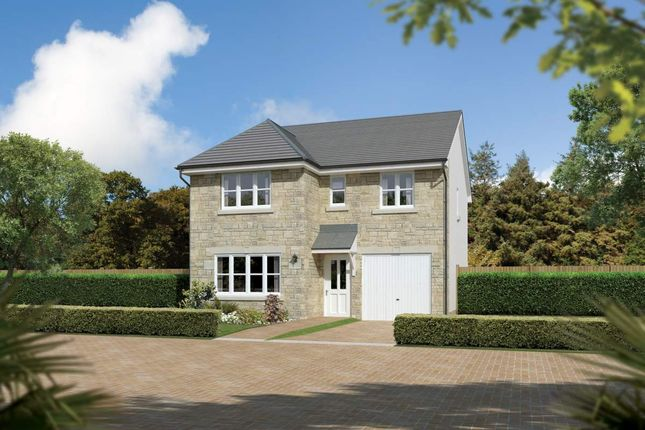 "Thumbnail Detached house for sale in ""Dukeswood"" at Colinhill Road, Strathaven"