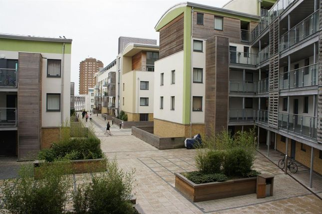 2 bed flat to rent in new england street brighton bn1 - 2 bedroom flats to rent in brighton ...