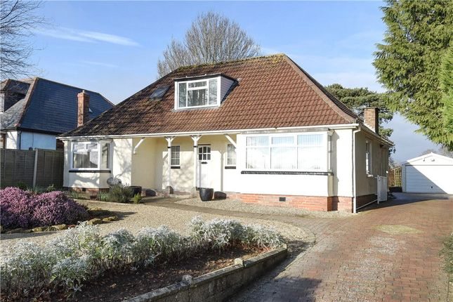 Thumbnail Detached bungalow for sale in West Coker Road, Yeovil, Somerset