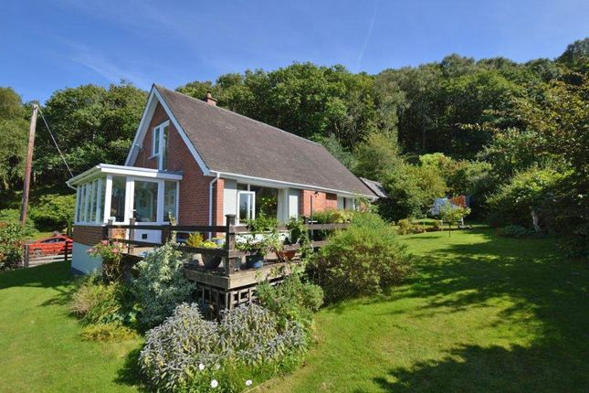 Thumbnail Detached bungalow for sale in Furnace, Machynlleth