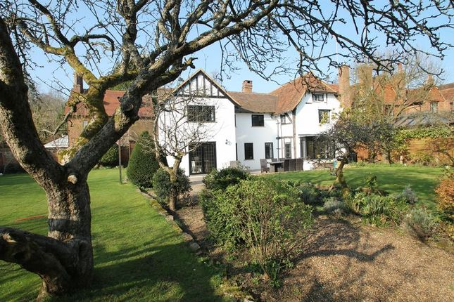 Thumbnail Detached house for sale in Upper Street, Shere, Guildford