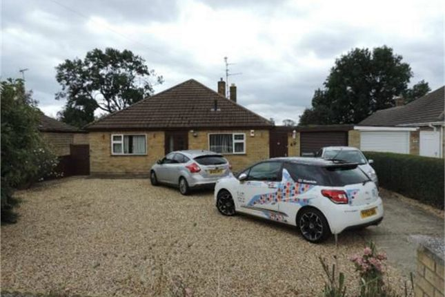 Thumbnail Detached bungalow to rent in Park Road, Deeping St James, Peterborough, Lincolnshire