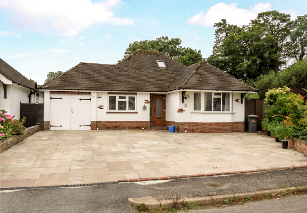 3 bed detached bungalow to rent in Old Drive, Polegate