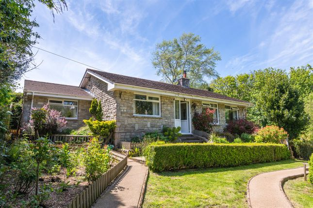 Thumbnail Bungalow for sale in Walditch, Bridport
