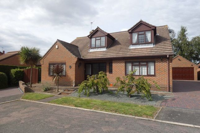 Thumbnail 3 bed bungalow to rent in Paddocks View, Long Eaton, Nottingham