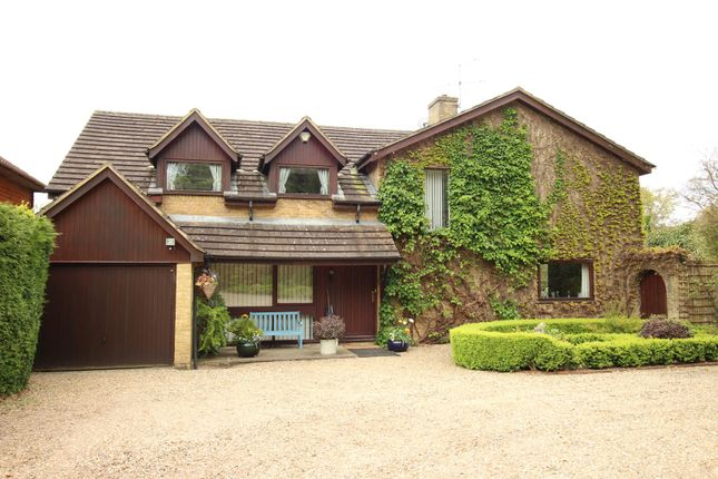 Thumbnail Detached house for sale in Rowbarns Way, East Horsley