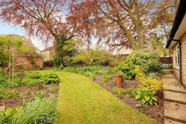 Garden At Front of New Walk, Beverley HU17