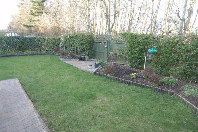 Rear Garden Cont'd