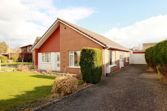 Thumbnail Detached bungalow for sale in Brechfa Close, Ponthir, Newport