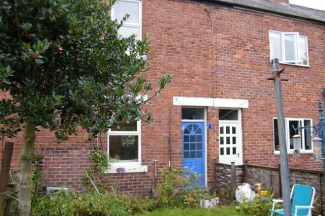 Thumbnail Semi-detached house to rent in Crawford Terrace, Morpeth
