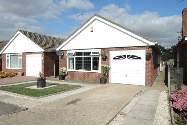 Thumbnail Detached bungalow for sale in Cypress Close, Clacton-On-Sea