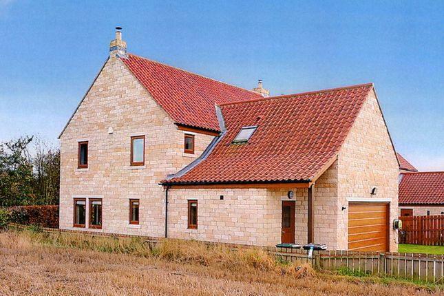 Thumbnail Detached house to rent in Cotchers Rise, Saxton, Tadcaster