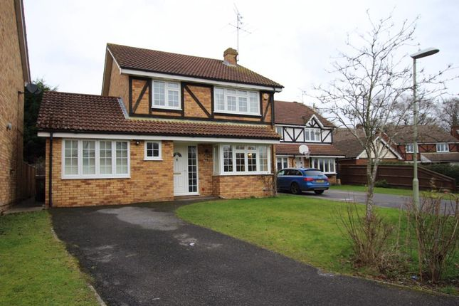 Thumbnail Detached house for sale in Cherry Tree Grove, Wokingham