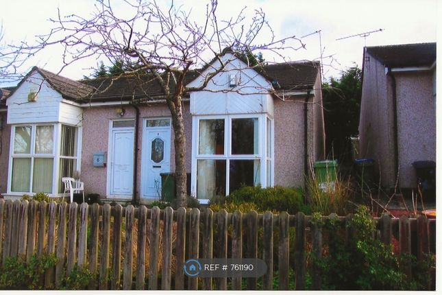 Thumbnail Bungalow to rent in Hillside Close, Maryport