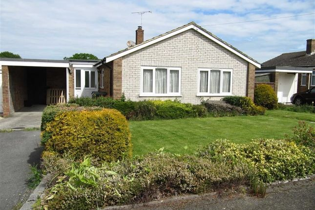 Thumbnail Detached bungalow for sale in Brede Valley View, Icklesham, East Sussex