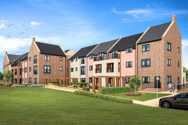 Thumbnail Flat for sale in Angus Road, Scone